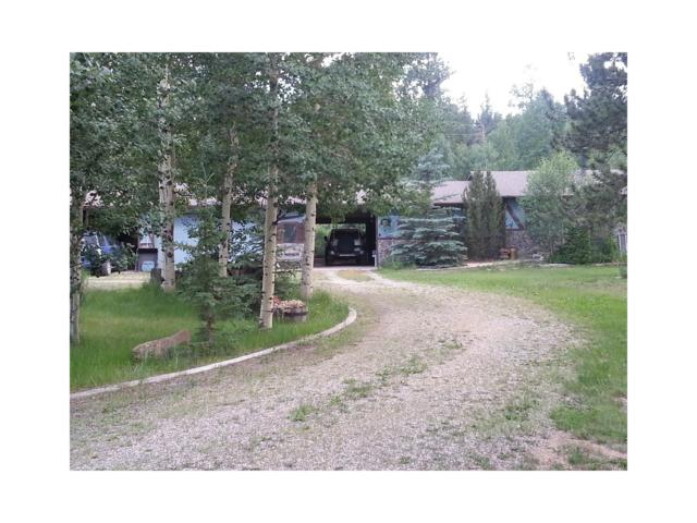 910 Aspen Drive, Bailey, CO 80421 (MLS #4352598) :: 8z Real Estate