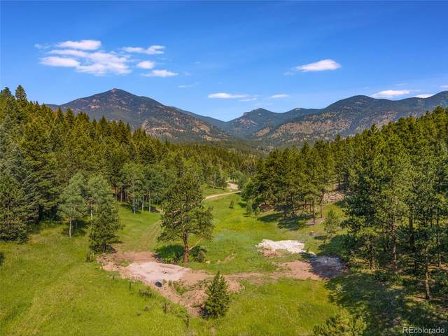 338 Red Lily Place, Evergreen, CO 80349 (#4353044) :: THE SIMPLE LIFE, Brokered by eXp Realty