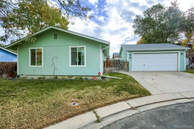 6330 W 92nd Place, Westminster, CO 80031 (#4355730) :: Sultan Newman Group
