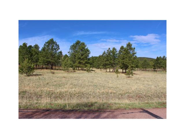 1270 Woodland Valley Ranch Drive, Woodland Park, CO 80863 (MLS #4355924) :: 8z Real Estate