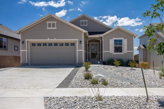 9143 Argentine Pass Trail, Colorado Springs, CO 80924 (#4357132) :: Ben Kinney Real Estate Team