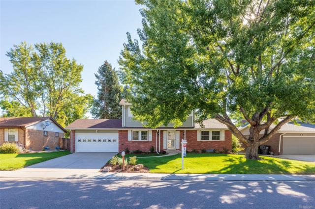 6426 S Ingalls Street, Littleton, CO 80123 (#4359759) :: Wisdom Real Estate