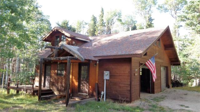 2609 Waldron Lane, Fort Garland, CO 81133 (#4365586) :: The Heyl Group at Keller Williams