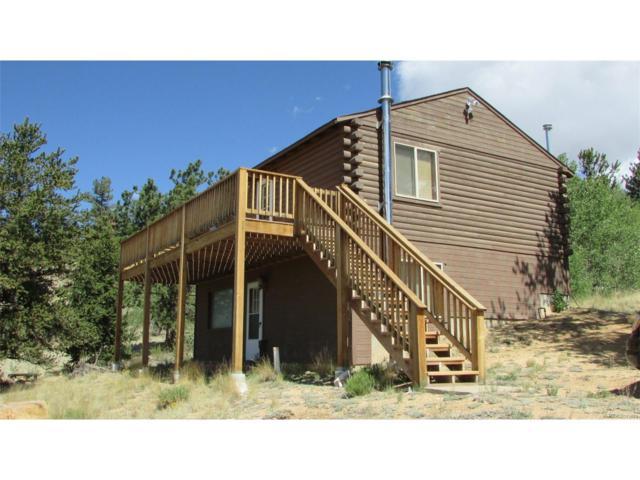 593 Chief Trail, Como, CO 80432 (MLS #4366093) :: 8z Real Estate