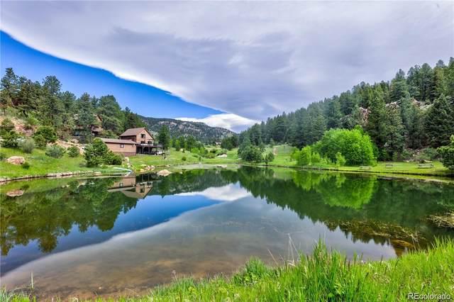 943 Wisp Creek Drive, Bailey, CO 80421 (MLS #4367663) :: 8z Real Estate