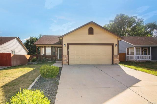 5181 Fennel Drive, Colorado Springs, CO 80911 (#4371885) :: The Peak Properties Group