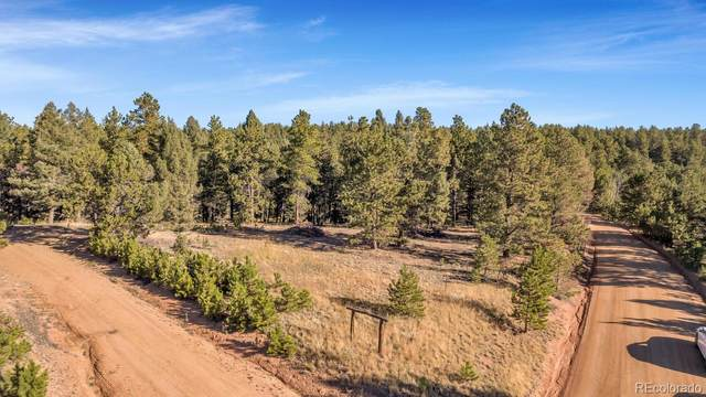 Lot 2 Peavey Place, Woodland Park, CO 80863 (#4373781) :: Finch & Gable Real Estate Co.