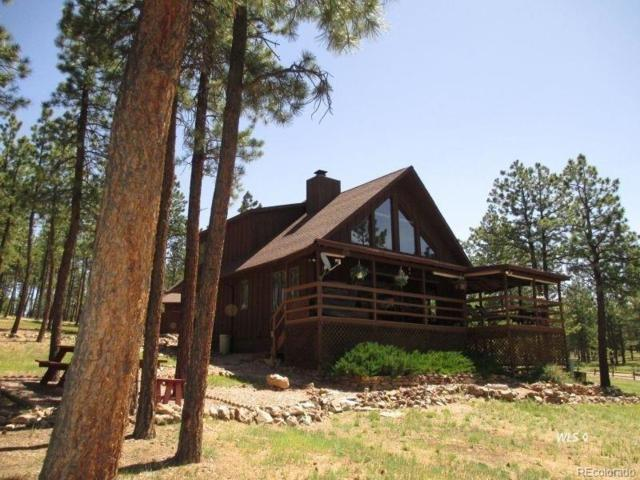 347 Gabbert Drive, Westcliffe, CO 81252 (#4374248) :: The Pete Cook Home Group