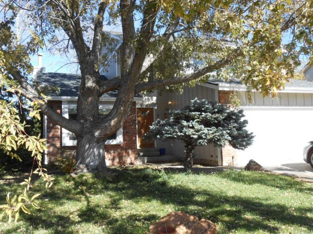 5146 S Yampa Circle, Centennial, CO 80015 (MLS #4381287) :: 8z Real Estate