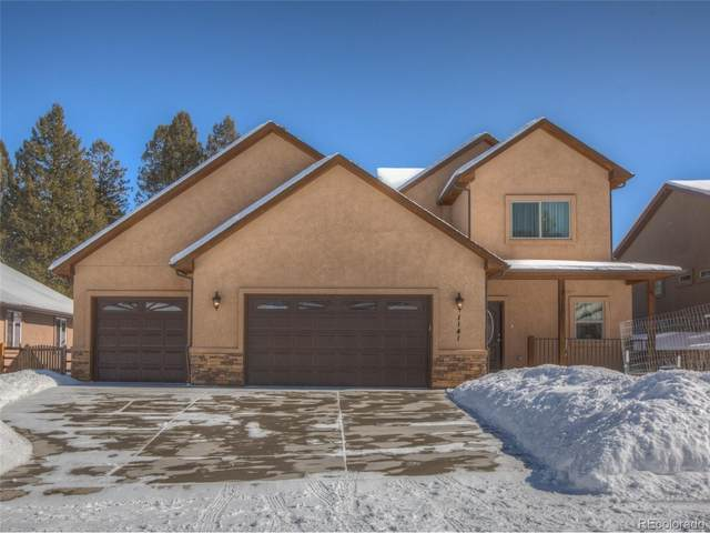1141 Ptarmigan Drive, Woodland Park, CO 80863 (MLS #4383627) :: 8z Real Estate
