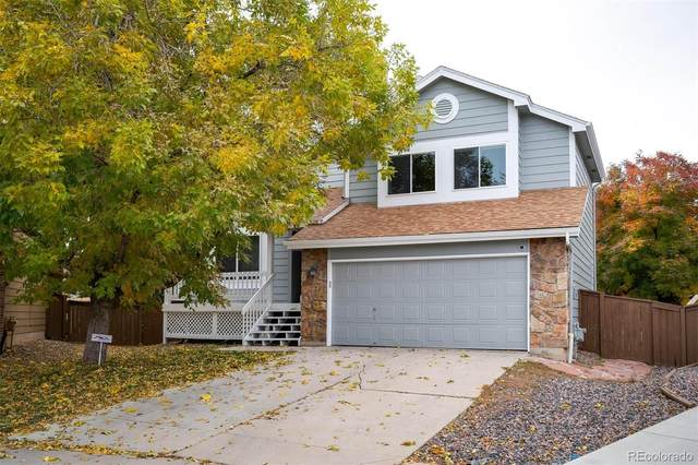 818 Poppywood Place, Highlands Ranch, CO 80126 (#4383925) :: The Gilbert Group