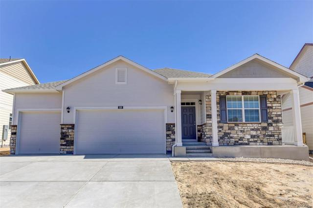 6045 High Timber Circle, Castle Rock, CO 80104 (#4388332) :: The HomeSmiths Team - Keller Williams