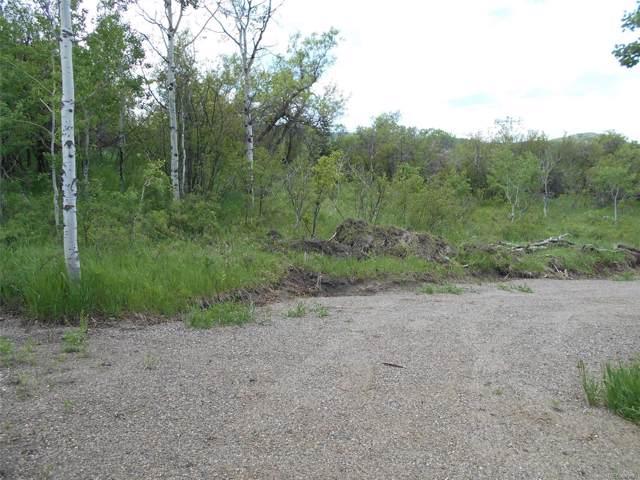 28350 Routt County Rd. 14, Oak Creek, CO 80467 (#4389699) :: The DeGrood Team