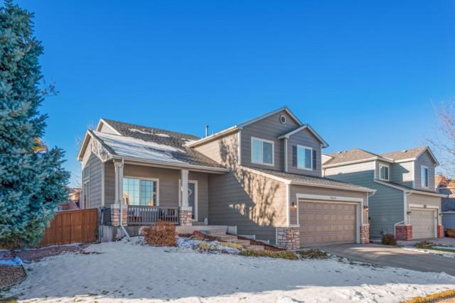 9869 Bathurst Way, Highlands Ranch, CO 80130 (#4391941) :: Sellstate Realty Pros