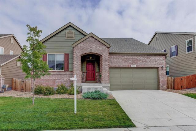 931 Sumner Way, Erie, CO 80516 (MLS #4395025) :: 8z Real Estate