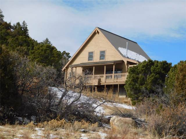 179 Half Mound Circle, Cotopaxi, CO 81223 (#4401622) :: The DeGrood Team