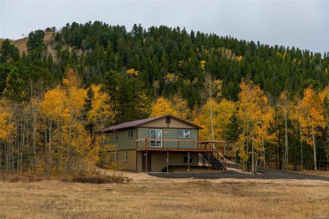 2918 Dory Hill Road, Black Hawk, CO 80422 (#4407554) :: Wisdom Real Estate
