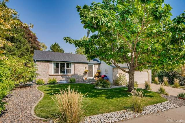 371 W Harper Street, Louisville, CO 80027 (MLS #4407760) :: 8z Real Estate