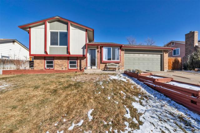 10740 Dexter Drive, Thornton, CO 80233 (#4409744) :: The Heyl Group at Keller Williams