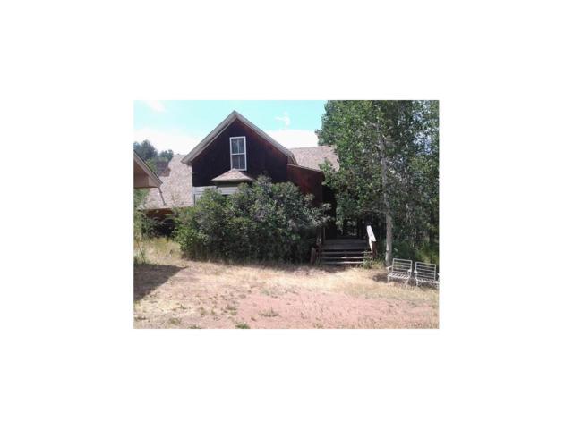 55090 Hwy 285, Shawnee, CO 80475 (MLS #4411452) :: 8z Real Estate