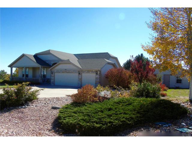 8480 E 160th Place, Brighton, CO 80602 (#4415236) :: The Thayer Group