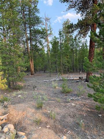 340 Peak View Drive, Twin Lakes, CO 80461 (MLS #4416432) :: Bliss Realty Group