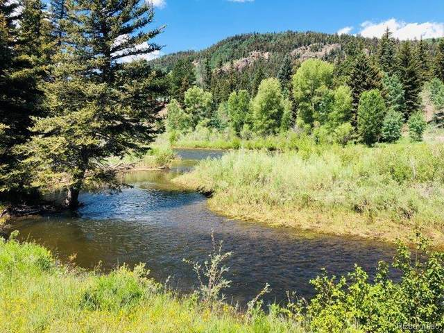 5 River View Trail, Antonito, CO 81120 (#4417015) :: The Peak Properties Group