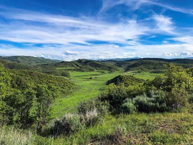25310 Rainbow Ridge, Oak Creek, CO 80467 (#4418034) :: The DeGrood Team