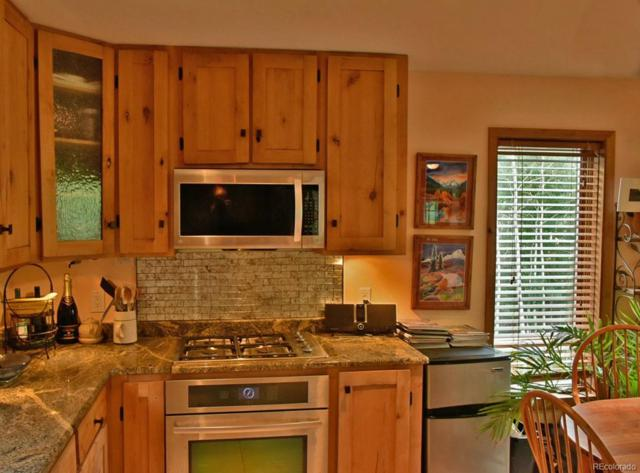 22 Ironclad View Road, Allenspark, CO 80510 (#4418380) :: My Home Team