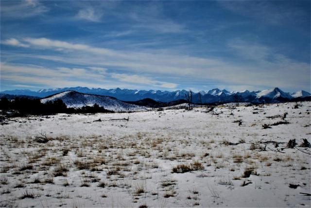 000 I Path, Cotopaxi, CO 81252 (MLS #4421541) :: 8z Real Estate