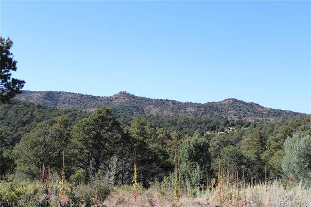 Fisher Peak Ranch Lot M5, Trinidad, CO 81082 (#4423453) :: Own-Sweethome Team