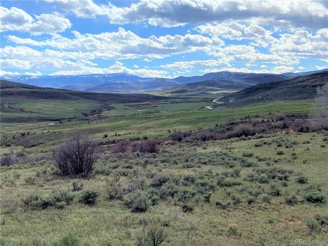 46 Acres County Road 14, Oak Creek, CO 80467 (#4424419) :: The DeGrood Team