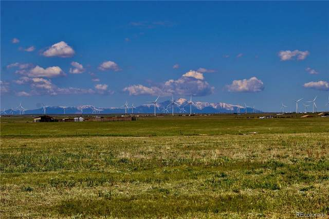 11630 Sals View, Calhan, CO 80808 (MLS #4425458) :: Wheelhouse Realty