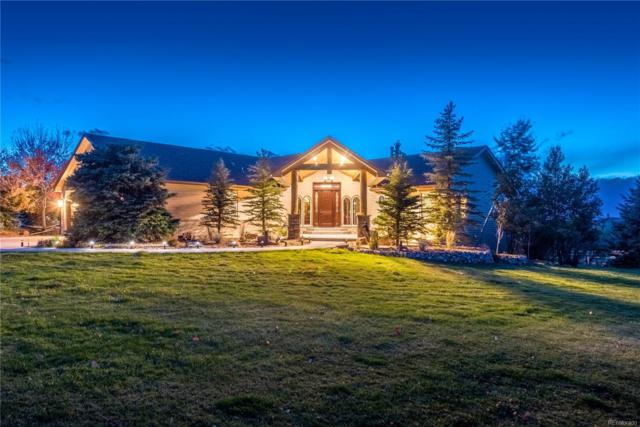 858 Meadow Station Circle, Parker, CO 80138 (#4427205) :: Wisdom Real Estate