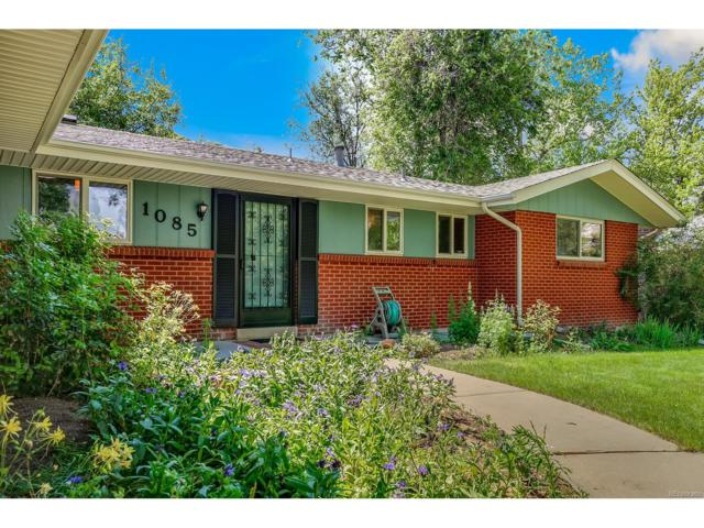 1085 Yank Street, Golden, CO 80401 (#4428197) :: The Peak Properties Group