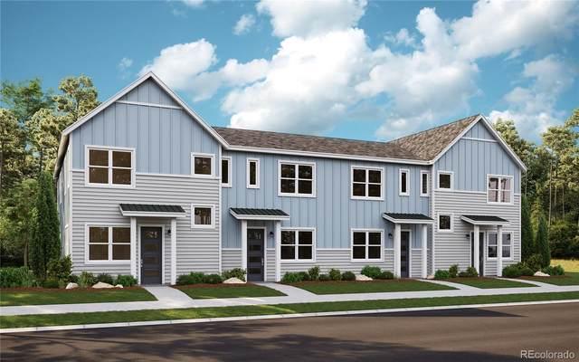 7844 Horsebrush Lane E, Littleton, CO 80125 (#4429024) :: Wisdom Real Estate