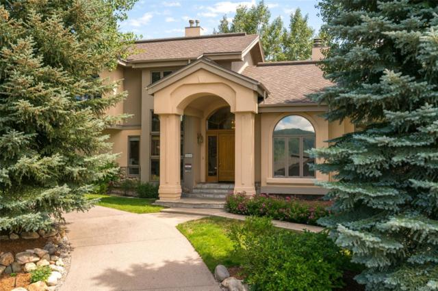 1614 Cornice Court, Steamboat Springs, CO 80487 (#4432261) :: House Hunters Colorado