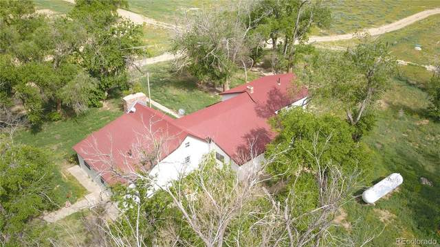 2600 State Road 71, Karval, CO 80823 (#4435483) :: The Harling Team @ Homesmart Realty Group