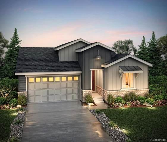 6689 Merrimack Drive, Castle Pines, CO 80108 (MLS #4436202) :: Kittle Real Estate
