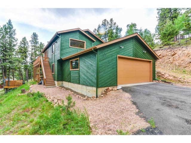 13139 Elsie Road, Conifer, CO 80433 (MLS #4436334) :: 8z Real Estate
