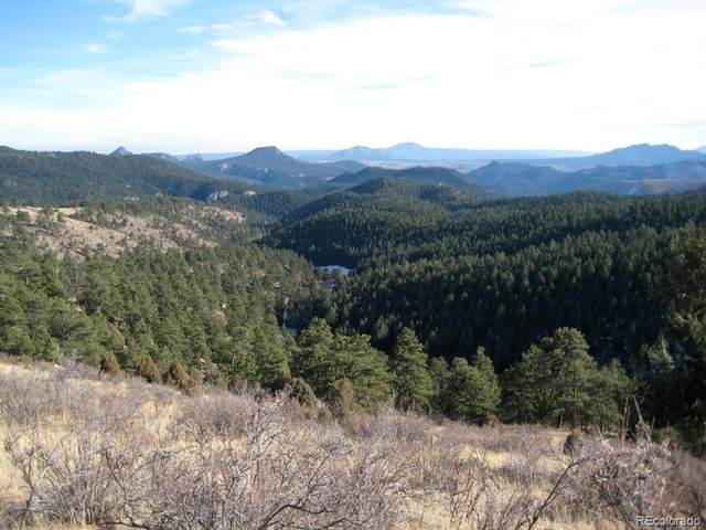 1 Jubilee Trail, Pine, CO 80470 (#4437193) :: The DeGrood Team