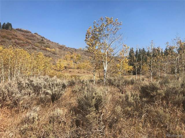 22620 Commanche Road, Oak Creek, CO 80467 (MLS #4439813) :: Neuhaus Real Estate, Inc.