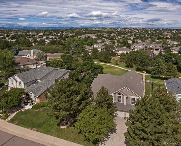 279 Clare Drive, Castle Pines, CO 80108 (#4445649) :: HomeSmart Realty Group