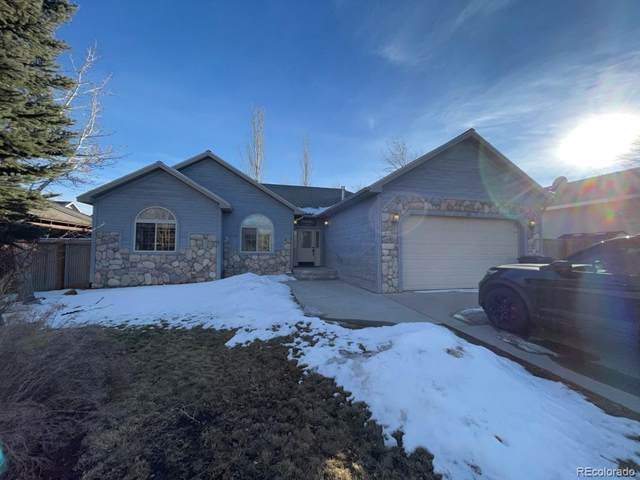 103 Brady Road, Buena Vista, CO 81211 (#4447858) :: Finch & Gable Real Estate Co.