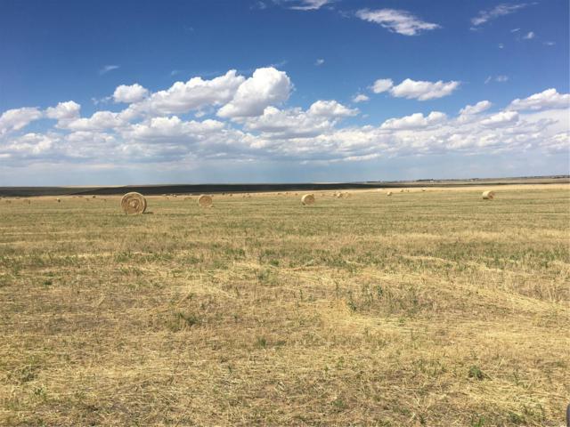 80 Acres Vacant Land, Strasburg, CO 80136 (#4448827) :: Compass Colorado Realty