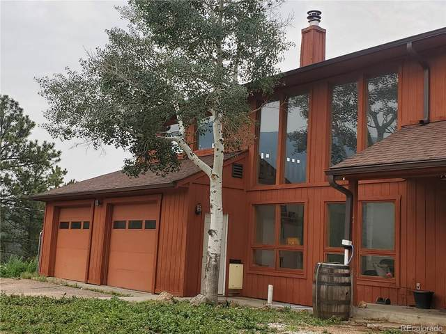 1919 Old Stagecoach Road, Shawnee, CO 80475 (#4449298) :: Kimberly Austin Properties