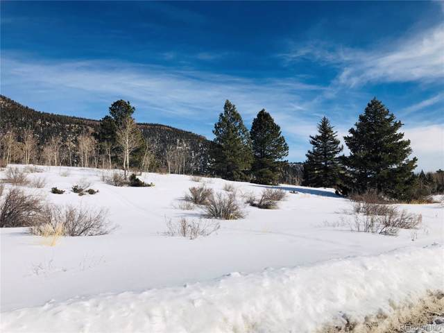 62 Bear Paw Court, Antonito, CO 81120 (#4452650) :: Compass Colorado Realty