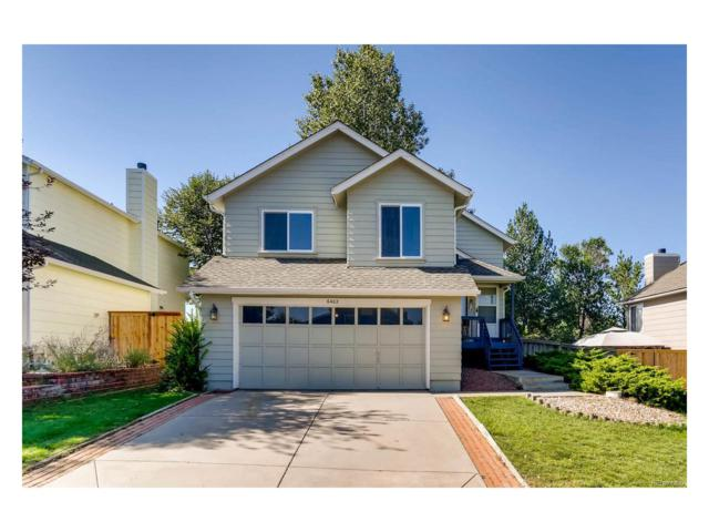 6402 Freeport Drive, Highlands Ranch, CO 80130 (#4454218) :: The Sold By Simmons Team