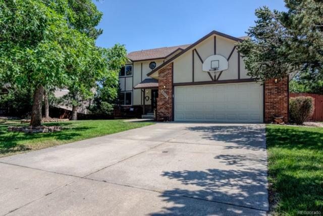 8802 Alpine Valley Drive, Colorado Springs, CO 80920 (MLS #4461590) :: 8z Real Estate