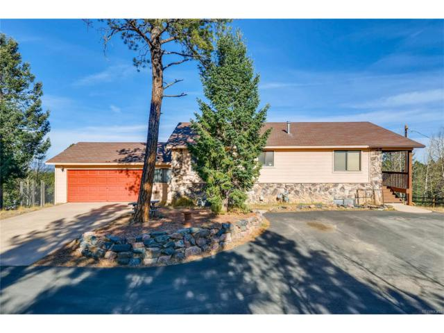 99 Candle Lake Drive, Divide, CO 80814 (#4462742) :: The Peak Properties Group